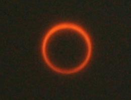 20110521.jpg